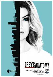 //assets.deltapictures.it/images/Pctv/locandine/serie-tv/trailers/TRgreysanatomy13.jpg